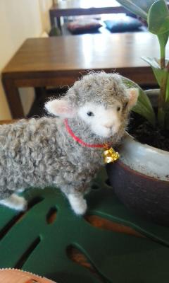 羊毛フェルトさん